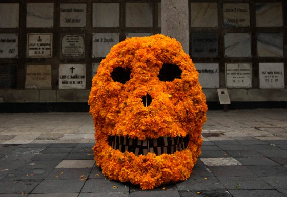 day of the dead skull covered in marigolds